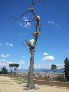 Prospettiva Vegetale a Firenze Forte di Belvedere