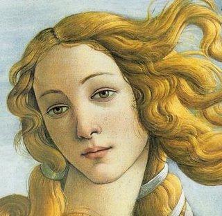 La Venere di Botticelli, probabilmente ispirata dalle moglie olandesi dei mercanti fiorentini
